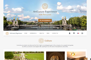 art-luxury-experience